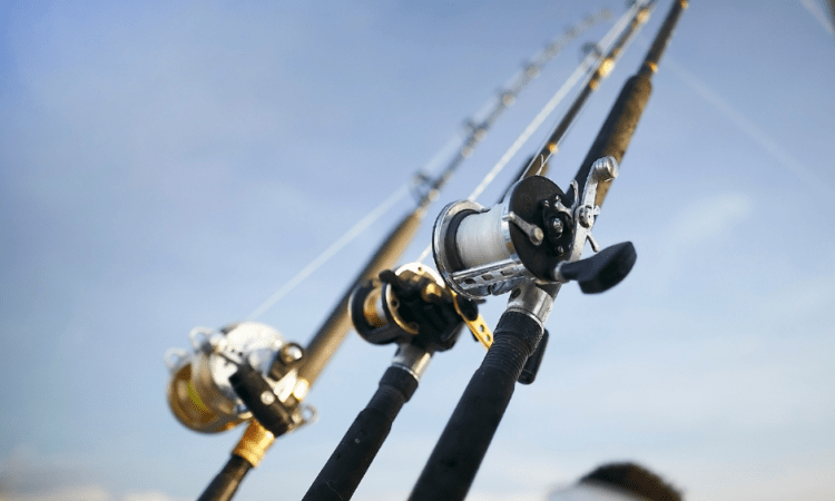 Fishing Charter Fishing Rods on Adelaide Fishing Charter
