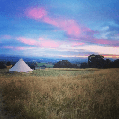 Tent On A Hill, McLaren Vale Glamping Adelaide