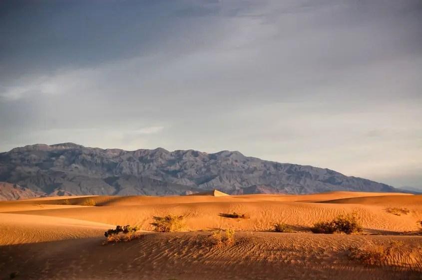 Death Valley Mesquite Sand Dune