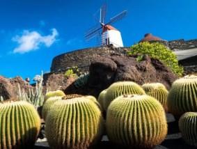 lanzarote jardins de cactus