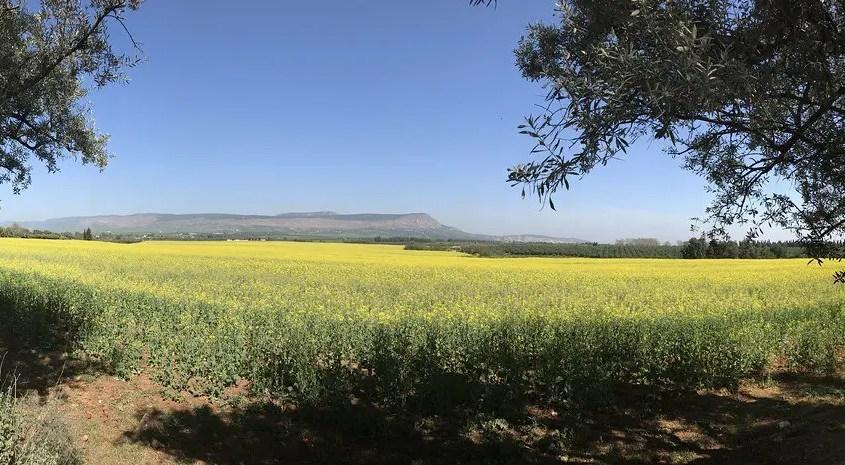 panorama marocchino