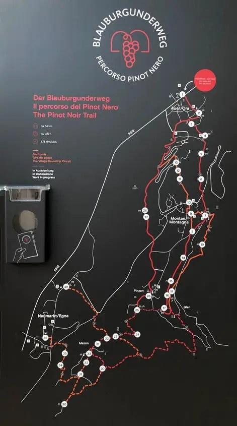 Il percorso del Pinot Nero