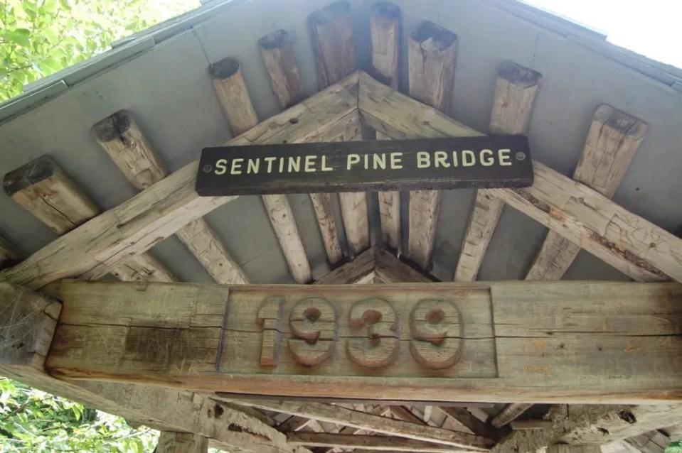 Sentinel Pine Bridge New Hampshire