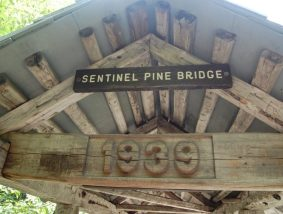 Sentinel Pine Bridge New Hampshire