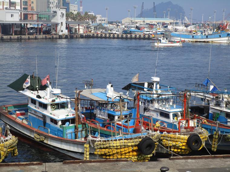 Jeju Island Fishing Boats in Pier