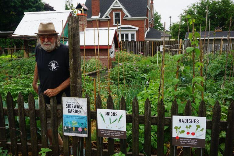 Queen's Green Community Garden Sidewalk Garden