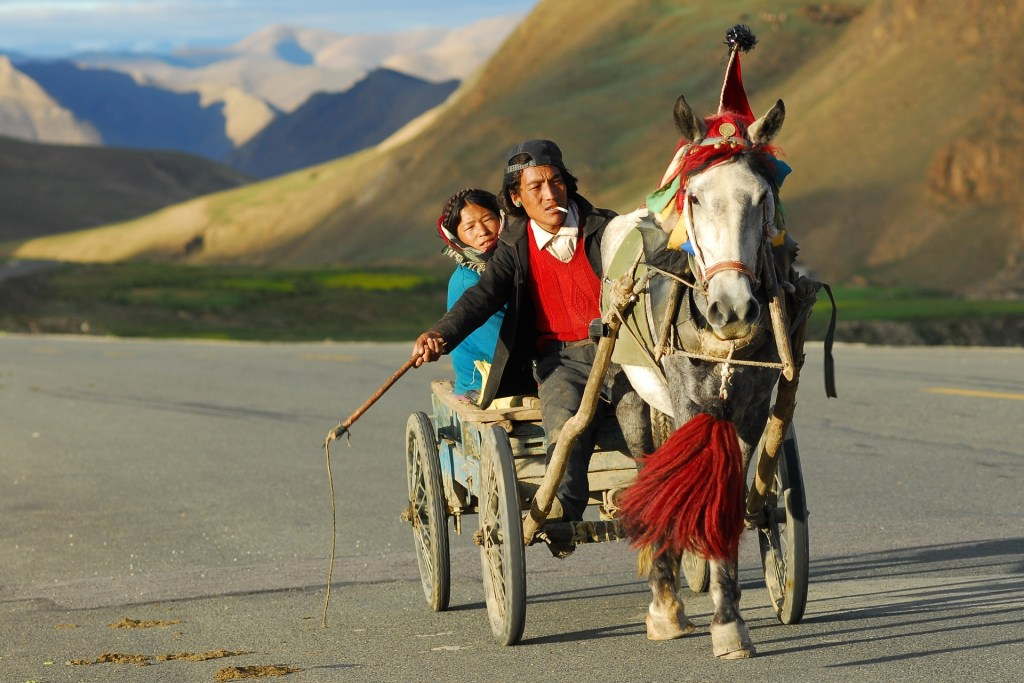 A form of transport in Southeast Asia - a man riding a horse and cart in Tibet.