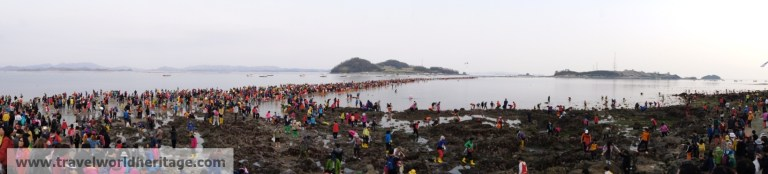 Panoramic picture of people walking across the water from Jindo to Modo