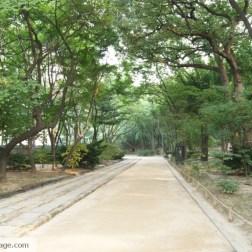 Shrine Park