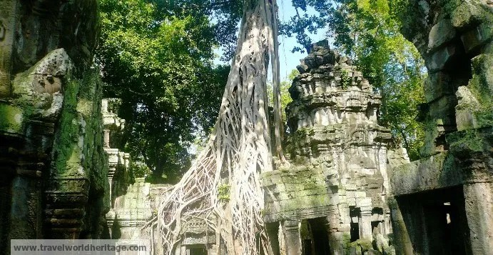 Why is Ta Prohm spooky and eerie?