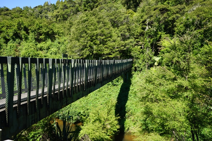 Hunua Ranges Bridge