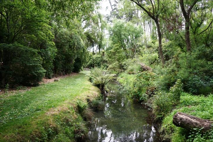 Western Springs Auckland