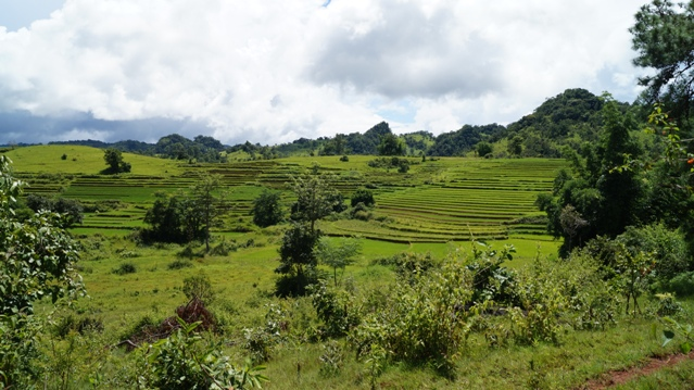 The Hills in kayah