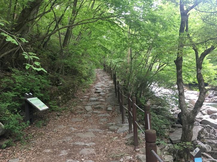 Jirisan Trail