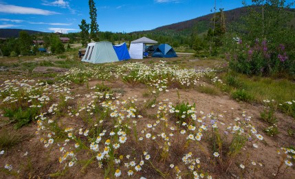 Camping at Snow Mountain. Photo by Carrie Dow.
