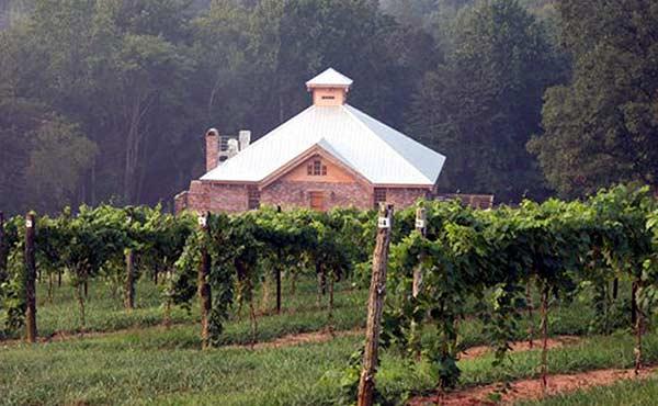 Elkin Creek Vineyard in North Carolina wine country