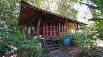 Toucan Cabin in Costa Rica