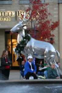 Decorated silver stag. Photo Credit: Bobbie Green