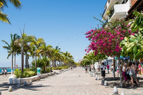 The Malecon walkway with palms & bouganvilla