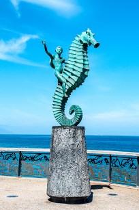 PV-seahorse