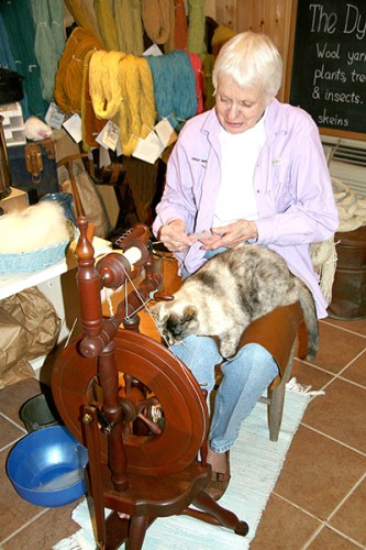 Spinning Wheel demonstration