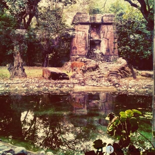 Alipore Zoological Garden, Kolkata
