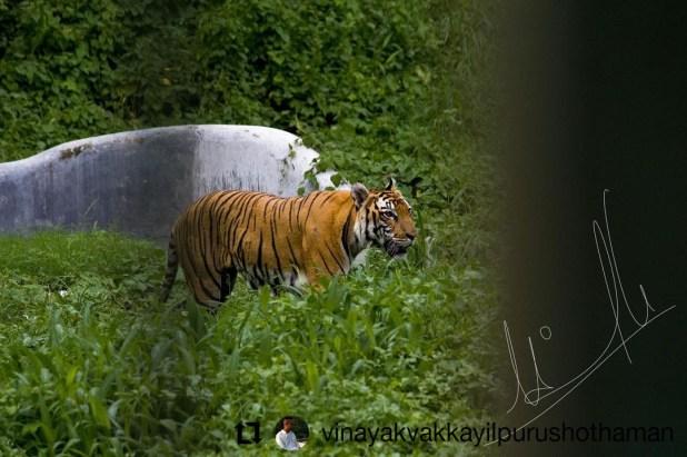 Assam Zoo