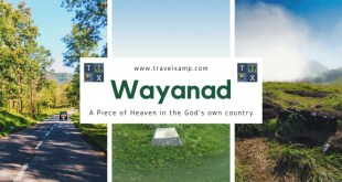 Wayanad: A Piece of Heaven in the God's own country
