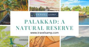 Palakkad: A Natural Reserve