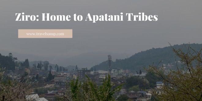 Ziro, Arunachal Pradesh: Home to Apatani tribe