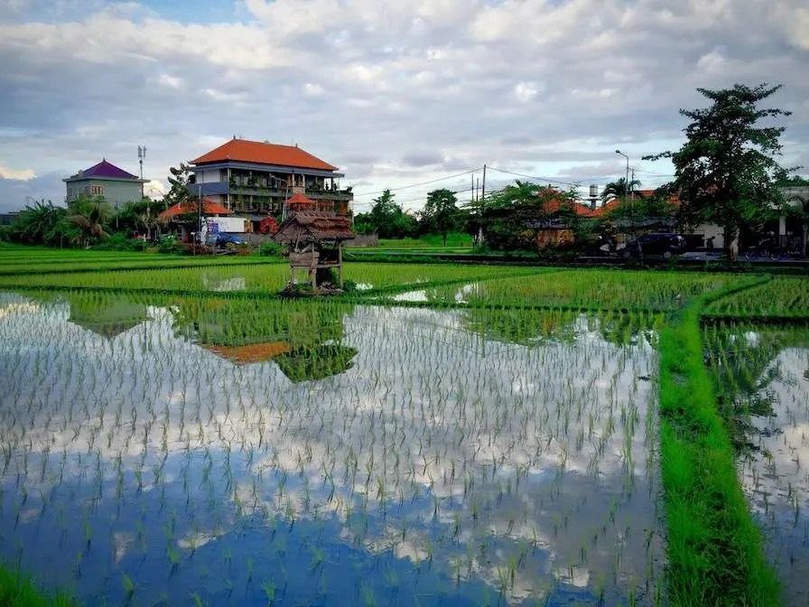 iPhone photography tips Bali Realistic