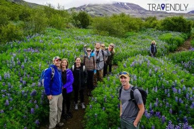 Beginning of the hike to glymur waterfall in Iceland