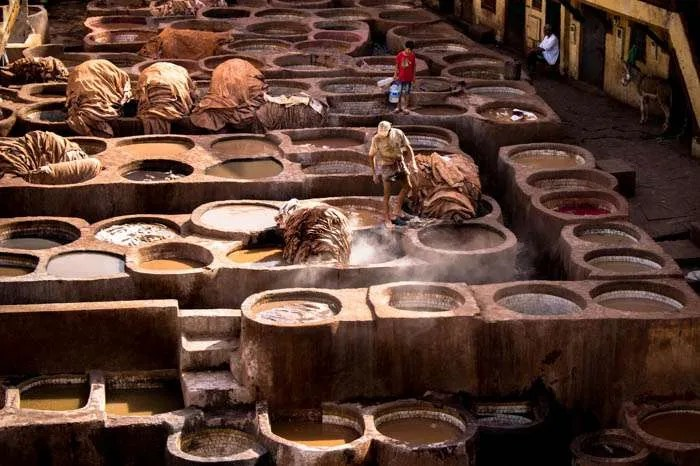 Leather tannery in Fes Morocco