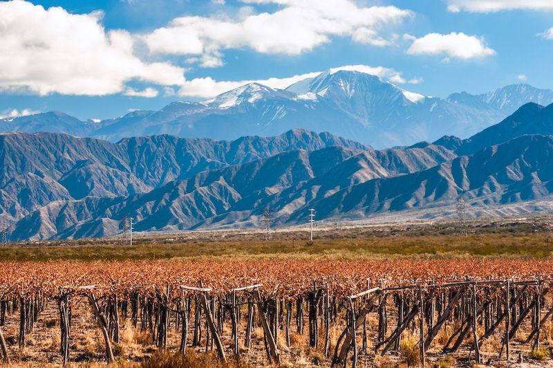 Aconcagua mountain Mendoza wine region