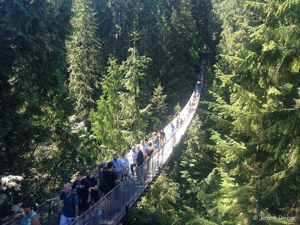 Voyager à Vancouver - Capilano Bridge