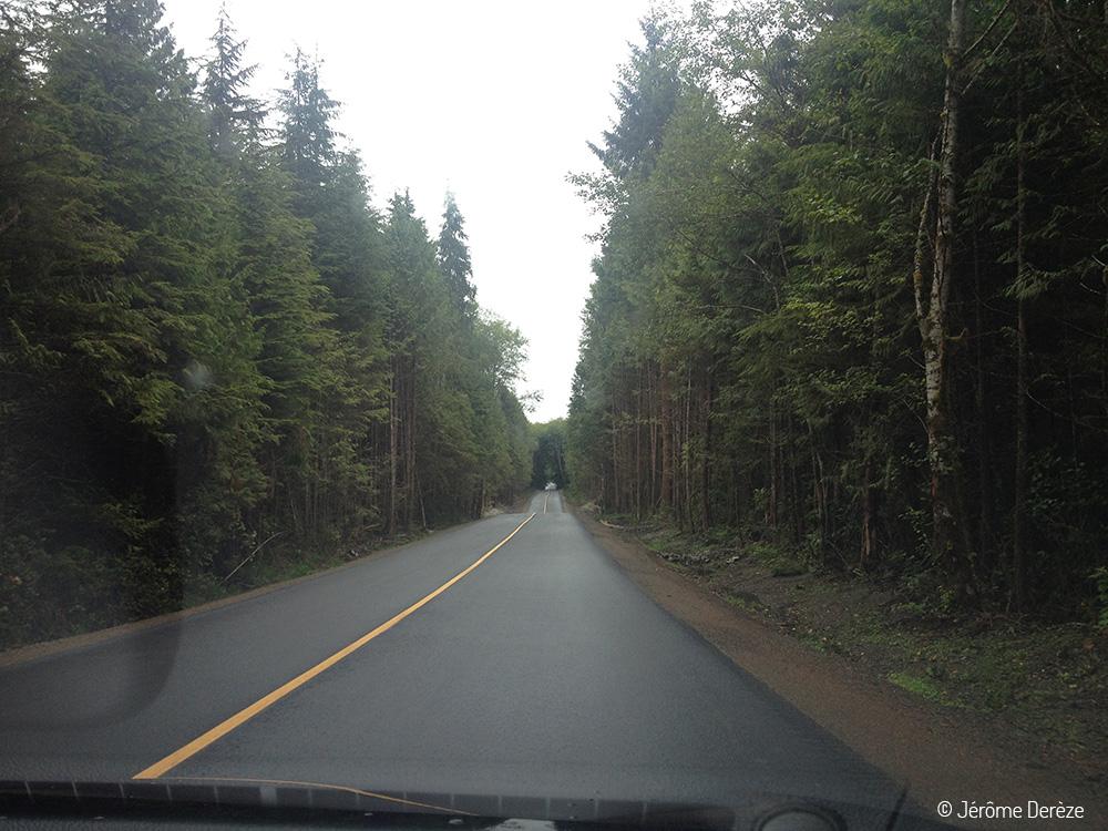 Routes touristiques à faire dans l'ouest canadien - Autoroute 4 Pacific Rim