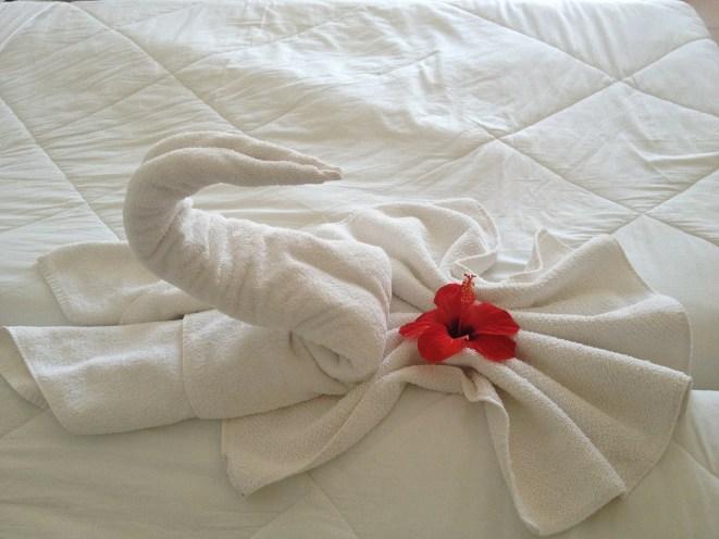 swan-200461_1280