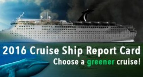 Cruise_Ship_report_card_slider_Updated (1)
