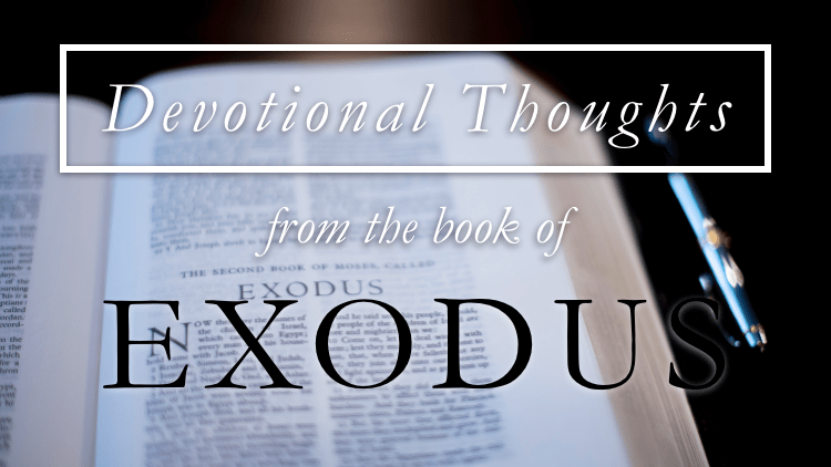 Wisdom to Do the Work (Exodus 36)