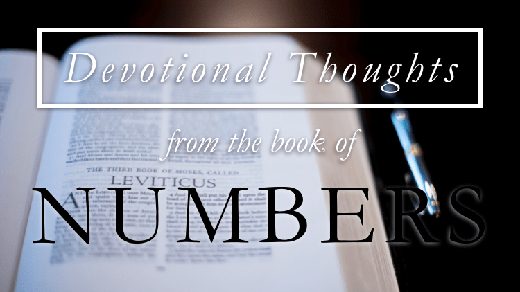 A Flashback of Unbelief (Numbers 32)