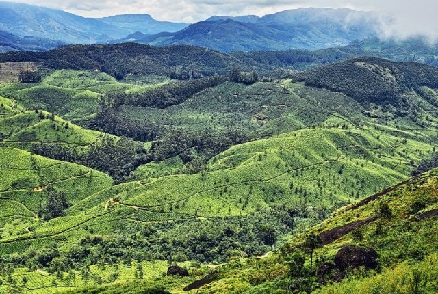 Image result for Pothamedu Viewpoint in Munnar