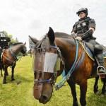 Bethlehem Police Horses Receive Donation Of Riot Gear Capital Gazette