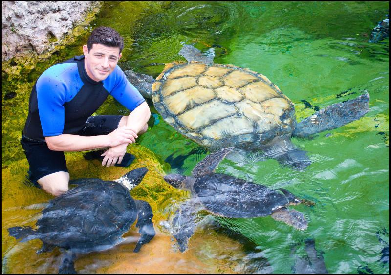 Sea Rescue Wildlife Docs Start New Seasons Orlando Sentinel