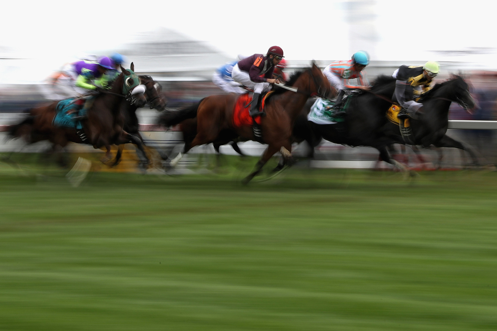 Analysis Betting Tips For Thursdays Race Card At Pimlico