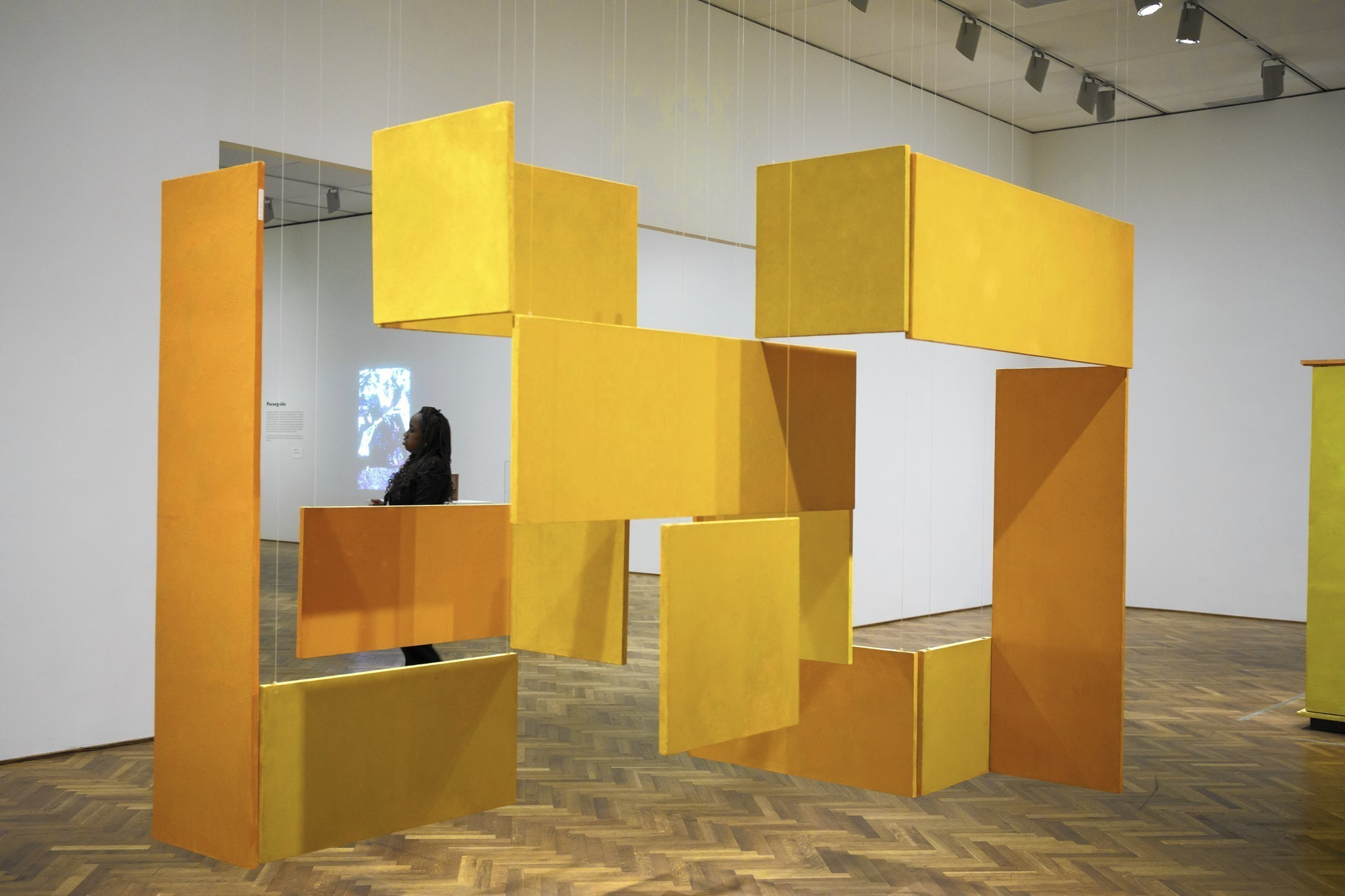 Helio Oiticicas Show Is Sensory Overload In All The Best Ways Chicago Tribune