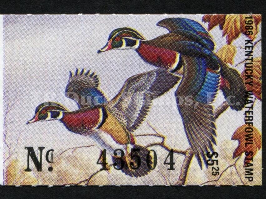 Tribe Hunting San Carlos Apache