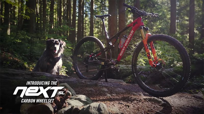 stock image showing Race Face Next SL Carbon Wheelset mounted to Rocky Mountain Thunderbolt mountain bike in forest next to dog