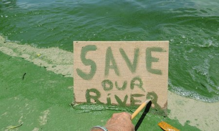 Toxic Algae: Call your legislators and sign our petition please photo: Rebecca Fatzing