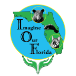 Imagine Our Florida, Inc.