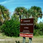 Canaveral National Seashore photo: cyndilenz